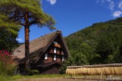 Villaggio di Shirakawago